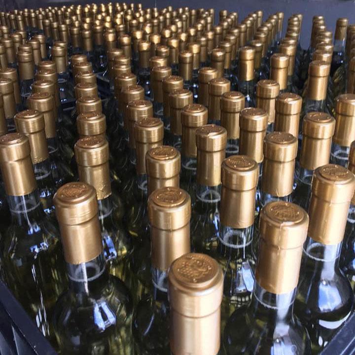 Vino-del-desierto-bodega-vinos