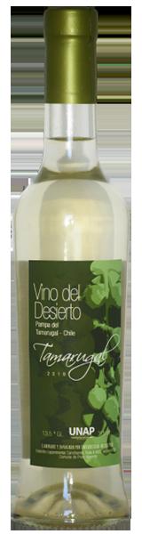 Vino-del-desierto-botella-tamarugal-seco-3